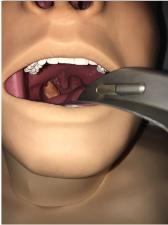 Otolaryngology Simulation to Manage Oropharyngeal Hemorrhage